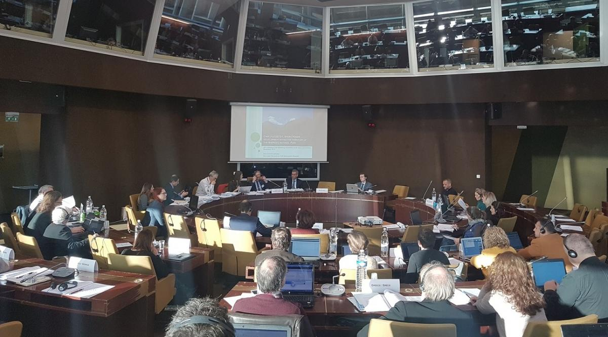 At the meeting of the Standing Committee, Council of Europe Strasbourg: Ana Colovic-Lesoska (Eco-sense) presents the Mavrovo case © Aleksandra Bujaroska
