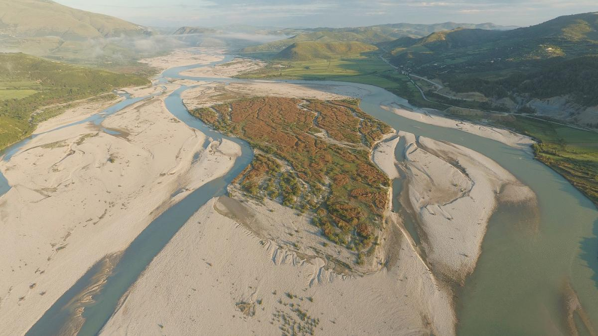 In some stretches, the last big wild river of Europe (outside Russia) expands up to 2km in width © Gregor Subic